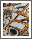 Low Tide Rock Pattern (sold)