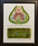 Raspberry bud and leaf x-sections (sold)